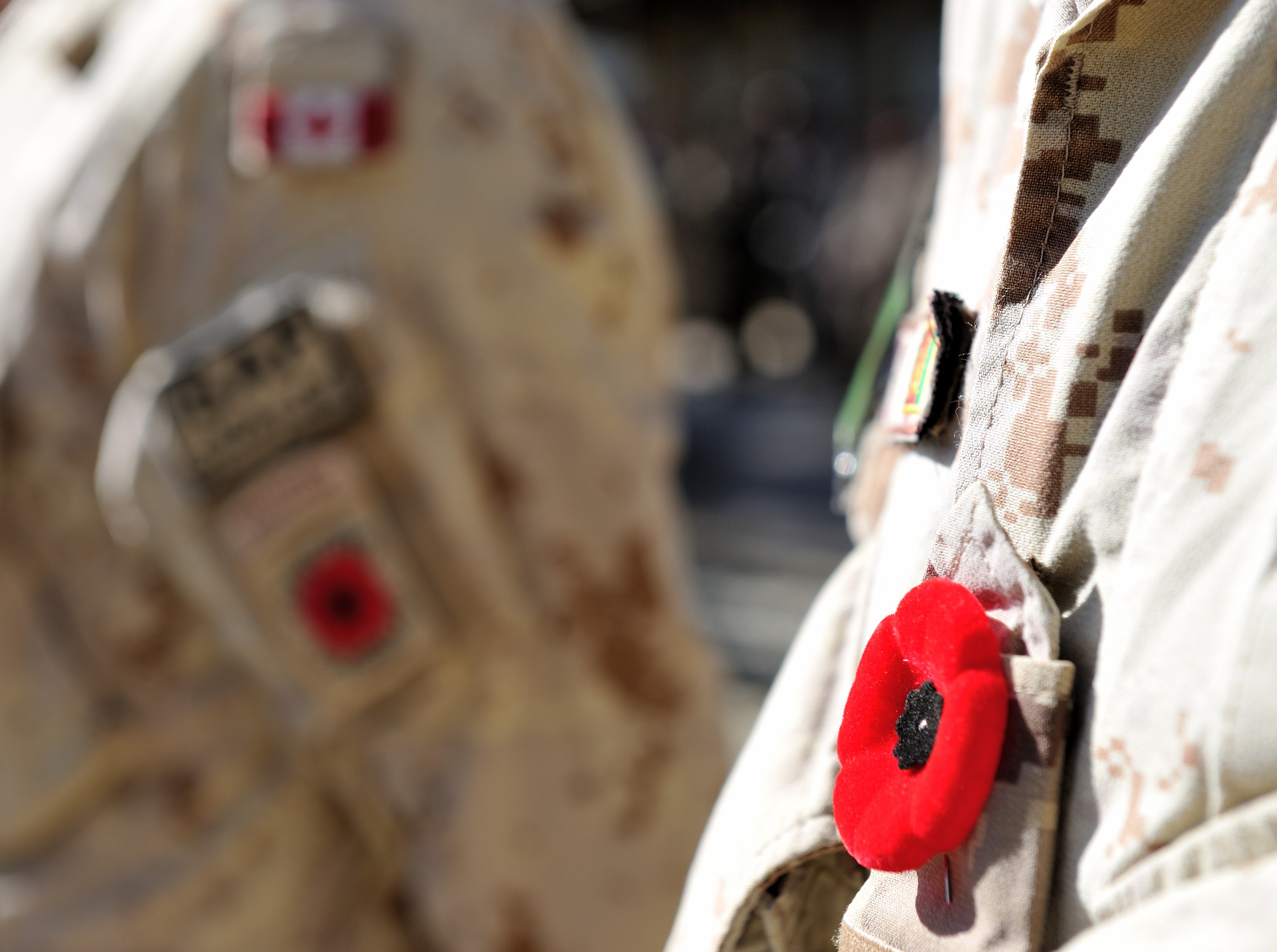 A poppy is pinned on a Canadian Armed Forces soldier's uniform at the final Remembrance Day ceremony held by Canadian soldiers in Afghanistan on November 11, 2013.