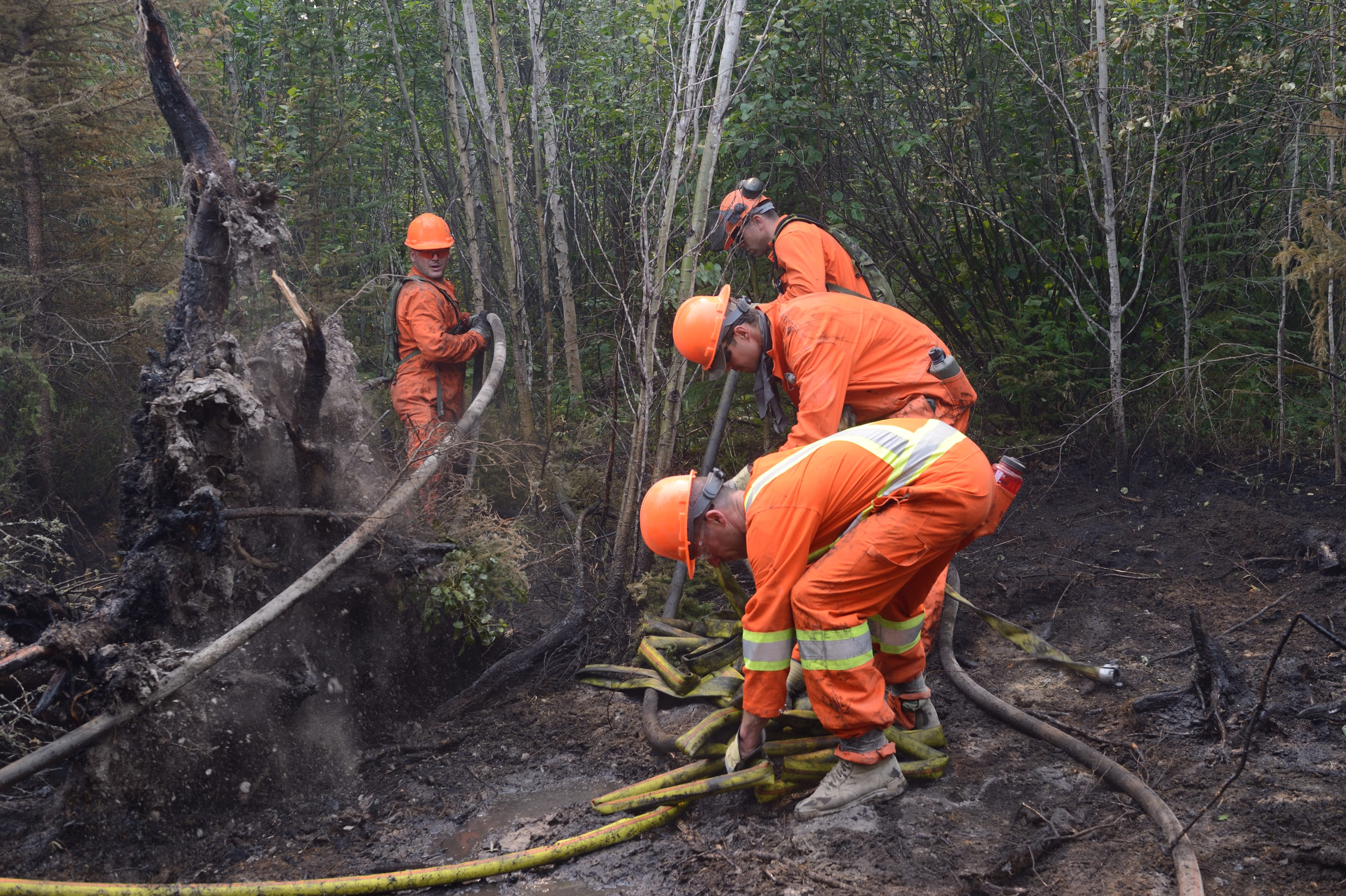 Members of 1 PPCLI B Company, Immediate Response Unit (West),extinguish a hot spot near La Ronge, Saskatchewan, during Operation LENTUS 15-02 on July 10, 2015. Photo by: MCpl Mélanie Ferguson, Canadian Army Public Affairs (LE2015-0053-09).
