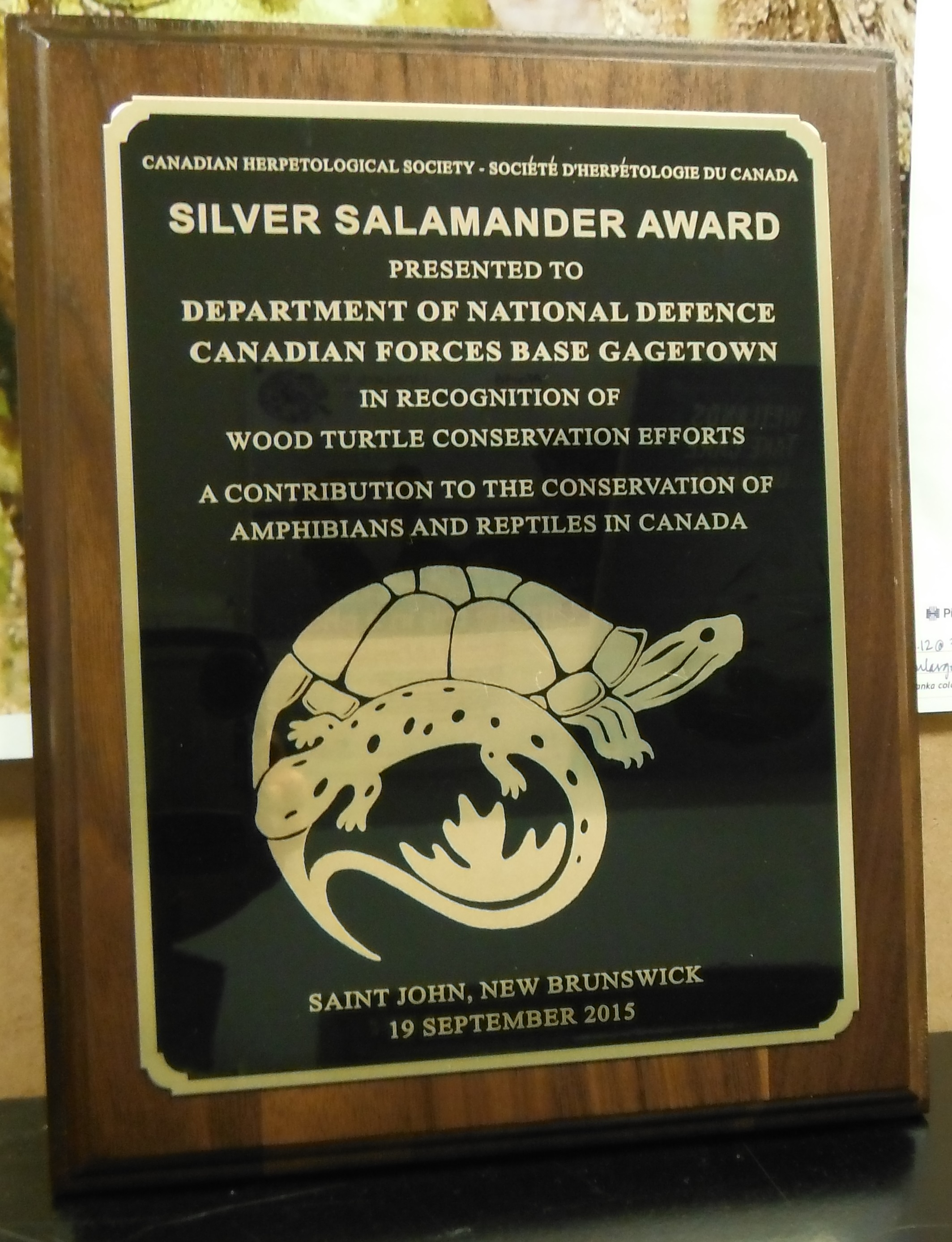 The Silver Salamander Award was presented in St. John, New Brunswick by the Canadian Herpetological Society to the Department of National Defence's 5th Canadian Division Support Base Gagetown in recognition of Wood Turtle conservation efforts on September 19, 2015. Only two such awards are awarded annually in Canada. Photo by: Joe Crowley.