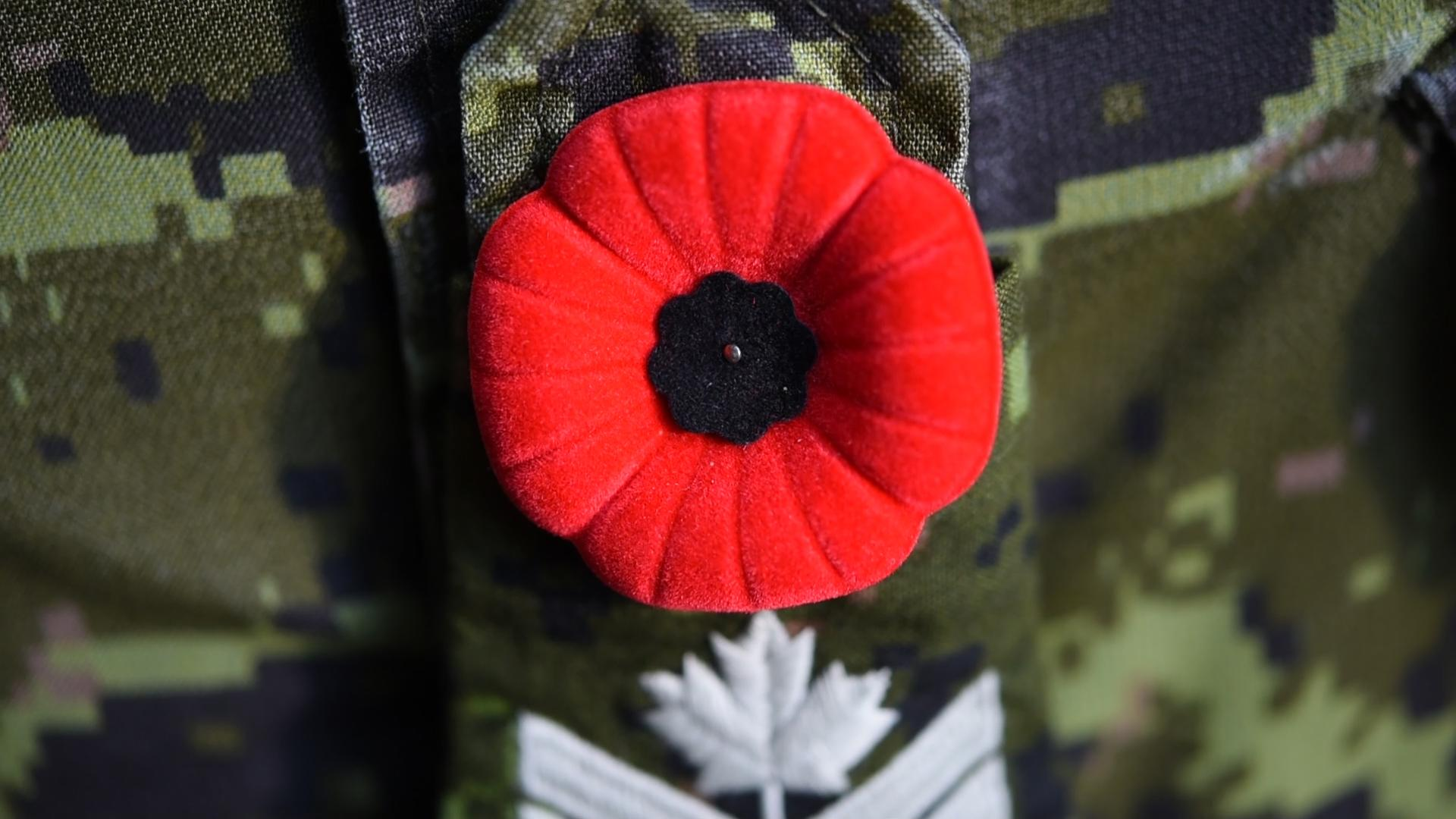 Army news national canadian army video poppy pinning a poppy pinned on a canadian army uniform mightylinksfo