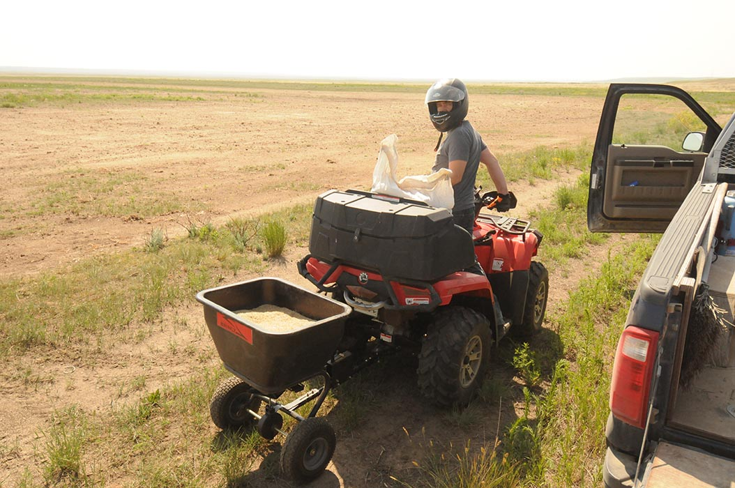In July 2105, Reclamation Biologist Corey Davidson reseeds a section of the Canadian Forces Base Suffield Training Area that was used as a Forward Operating Base during military training exercises. Photo: provided by Corey Davidson.