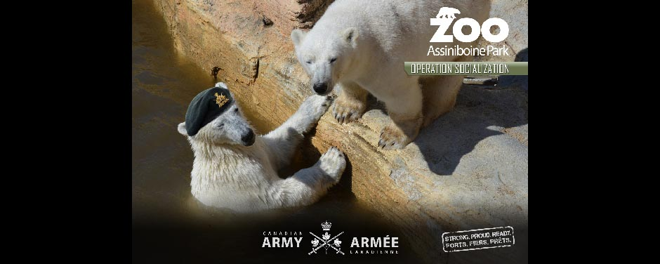 Slide - Honorary Corporal Juno arrives at the Assiniboine Park Zoo