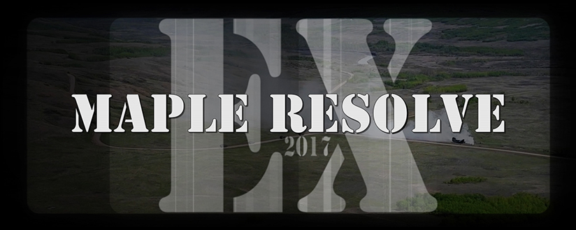 Slide - Black and white graphic with the words Ex AMPLE RESOLVE 2017